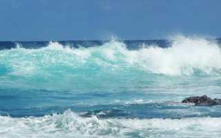 Какие материки и страны омывают моря Тихого океана