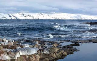 Самые впечатляющие факты о Северном Ледовитом океане