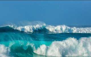Пути решения проблем с экологией вод Тихого океана
