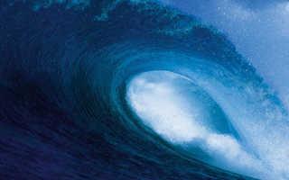 Точное количество океанов на планете и их названия
