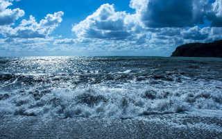 Какие моря находятся в России