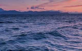 Климатические пояса, в которых располагается Тихий океан