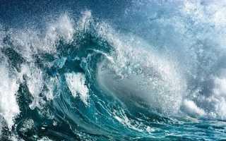 Значение океана в жизни Земли
