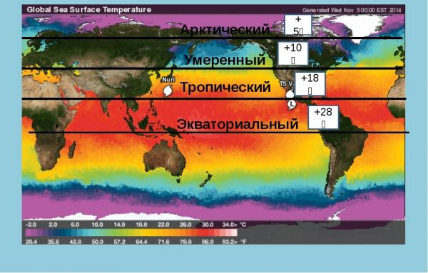 Природные пояса Тихого океана