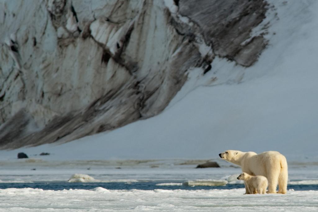 Остров Северная Земля
