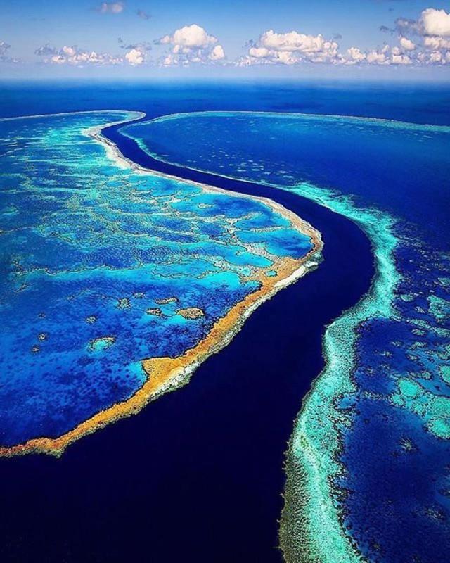 Большой Барьерный риф в океане