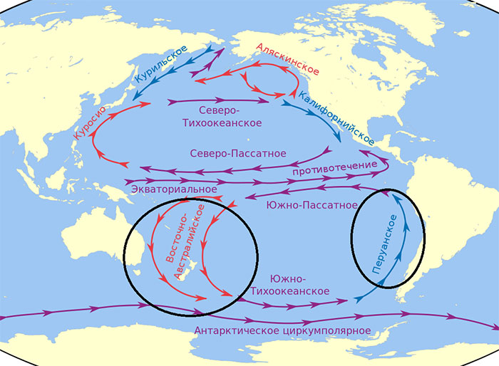 Потоки океана