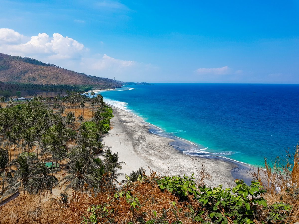 Тиморское