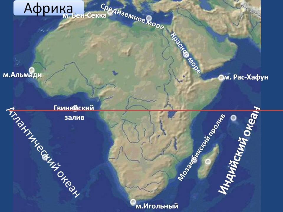 Гвинейский